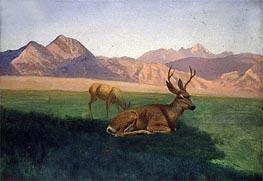 Deer, indated by Bierstadt | Giclée Canvas Print