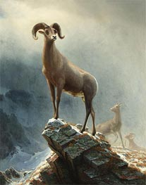 Bierstadt | Rocky Mountain, Big Horn Sheep, c.1882/38 | Giclée Canvas Print
