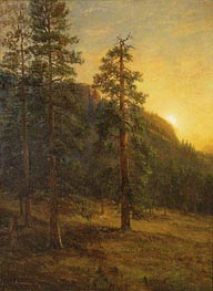 Bierstadt | California Redwoods, 1872 | Giclée Canvas Print