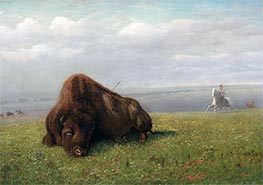 Bierstadt | Buffalo Hunting, undated | Giclée Canvas Print