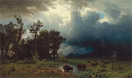 Buffalo Trail: The Impending Storm, 1869 by Bierstadt | Giclée Canvas Print