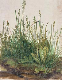 Durer | The Great Piece of Turf | Giclée Canvas Print