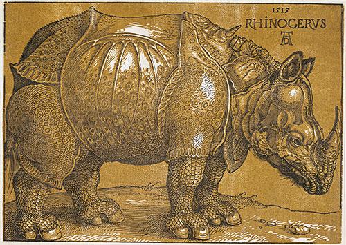 Rhinocerus, 1515   Durer   Painting Reproduction