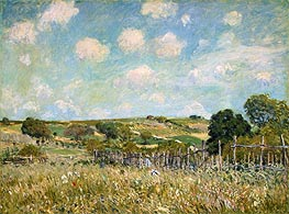 Alfred Sisley | Meadow, 1875 | Giclée Canvas Print