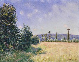 Alfred Sisley | Sahurs Meadows in Morning Sun, 1894 | Giclée Canvas Print