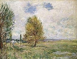 Alfred Sisley | The Plain at Veneux-Nadon, 1881 | Giclée Canvas Print