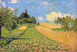 Alfred Sisley | The Cornfield near Argenteuil, 1873 | Giclée Canvas Print