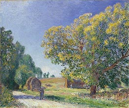 Alfred Sisley | A Forest Clearing, 1895 | Giclée Canvas Print