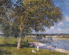 Alfred Sisley | Walnut in a Meadow Thomery, 1880 | Giclée Canvas Print