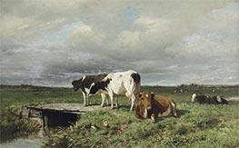 Cattle in an Extensive Polder Landscape, Undated by Anton Mauve   Giclée Canvas Print