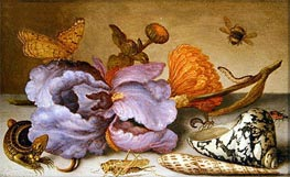van der Ast | Still Life Depicting Flowers, Shells and Insects, undated | Giclée Canvas Print