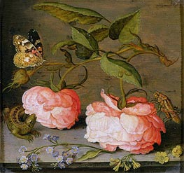 van der Ast | A Still Life with Roses on a Ledge | Giclée Canvas Print