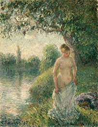The Bather, 1895 by Pissarro | Giclée Canvas Print