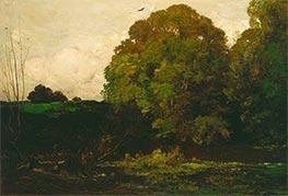 A Pond in the Morvan, 1869 by Charles-Francois Daubigny | Giclée Canvas Print