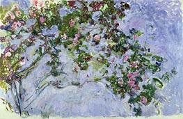 Monet | The Roses, c.1925/26 | Giclée Canvas Print
