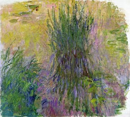 Monet | Water Lilies, undated | Giclée Canvas Print