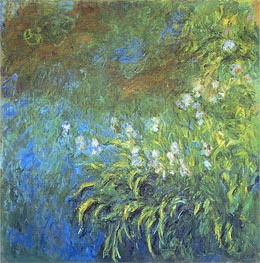 Monet | Iris, c.1922/26 | Giclée Canvas Print