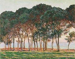 Monet | Under the Pines, Evening, 1888 | Giclée Canvas Print