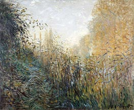 Monet | Bulrush (Juncus), 1876 | Giclée Canvas Print