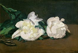 Manet | Branch of White Peonies and Secateurs, 1864 | Giclée Canvas Print