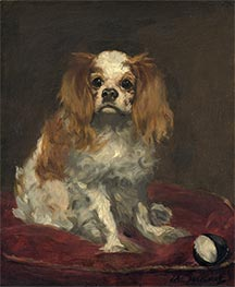 A King Charles Spaniel, c.1866 by Manet | Giclée Canvas Print