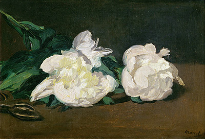 Branch of White Peonies and Secateurs, 1864 | Manet | Painting Reproduction