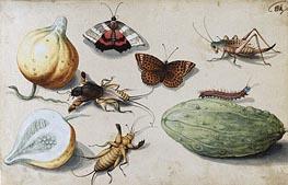 Georg Flegel | Butterfly, Beetle, Grasshopper and Caterpillar | Giclée Canvas Print