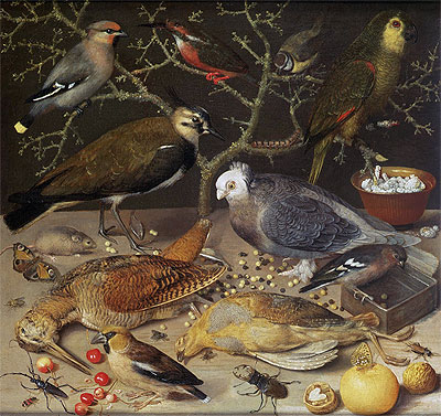 Still Life of Birds and Insects, 1637 | Georg Flegel | Painting Reproduction