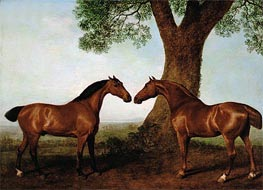 George Stubbs | Two Bay Hunters by a Tree | Giclée Canvas Print