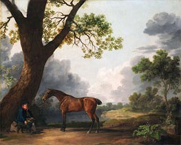 George Stubbs | The Third Duke of Dorset's Hunter with a Groom and a Dog | Giclée Canvas Print