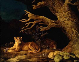 Lion and Lioness, 1771 by George Stubbs | Giclée Canvas Print