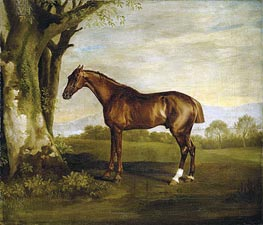 Antinoüs, a Chestnut Racehorse in a Landscape, undated by George Stubbs | Giclée Canvas Print