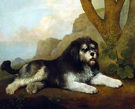 A Rough Dog, 1790 by George Stubbs | Giclée Canvas Print
