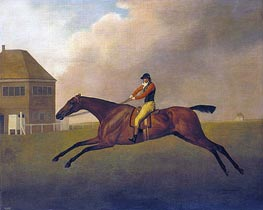 Baronet with Samuel Chifney up, 1791 by George Stubbs | Giclée Canvas Print