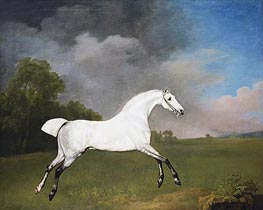 A Grey Horse, 1793 by George Stubbs | Giclée Canvas Print