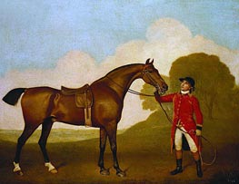 A Bay Horse with a Groom, 1791 by George Stubbs | Giclée Canvas Print