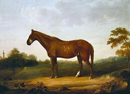 A Chestnut Cob in the Park at Gibside, c.1800/50 by George Stubbs | Giclée Canvas Print
