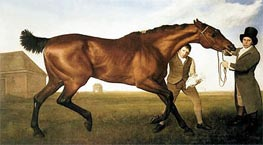 George Stubbs | Hambletonian, Rubbing Down, 1800 | Giclée Canvas Print