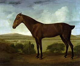 George Stubbs | Brown Horse in a Hilly Landscape, c.1785 | Giclée Canvas Print