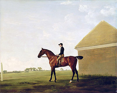 Turf, c.1765 | George Stubbs | Painting Reproduction