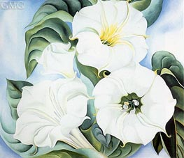O'Keeffe | Jimson Weed | Giclée Canvas Print