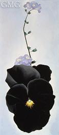 O'Keeffe   Pansy   Giclée Canvas Print