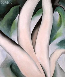 O'Keeffe | Birch Trees at Dawn on Lake George, 1925 | Giclée Canvas Print