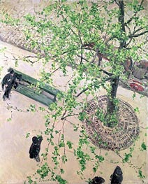 Caillebotte | Boulevard seen from Above, 1880 | Giclée Canvas Print