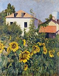 Sunflowers, Garden at Petit Gennevilliers, 1885 by Caillebotte | Giclée Canvas Print