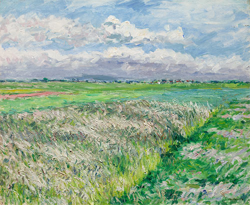 The Fields, a Plain in Gennevilliers, 1884 | Caillebotte | Painting Reproduction