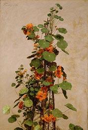 Fantin-Latour | Nasturtiums, Capucines, Tropaeolum majus, 1880 | Giclée Canvas Print