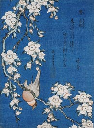 Hokusai | Bullfinch and Weeping Cherry Blossoms from Serie 'Flowers and Birds' | Giclée Paper Print