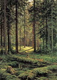 Ivan Shishkin | Pine Forest, Sunny Day | Giclée Canvas Print
