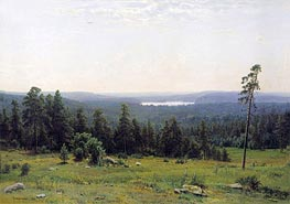 Ivan Shishkin | Woodland Vistas | Giclée Canvas Print